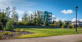 Photo 28: 417 2588 ANDERSON Way in Edmonton: Zone 56 Condo for sale : MLS®# E4184624