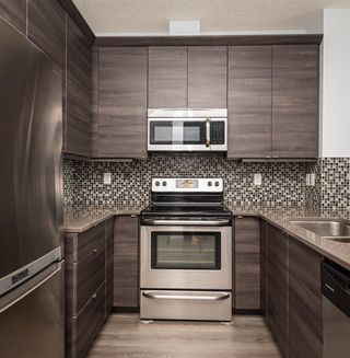Photo 22: 417 2588 ANDERSON Way in Edmonton: Zone 56 Condo for sale : MLS®# E4184624
