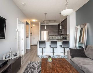 Photo 8: 417 2588 ANDERSON Way in Edmonton: Zone 56 Condo for sale : MLS®# E4184624