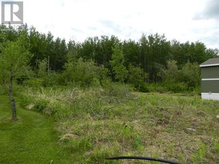 Photo 4: 38 160,  PEACE RIVER AVE Avenue in Joussard: Vacant Land for sale : MLS®# AW52107