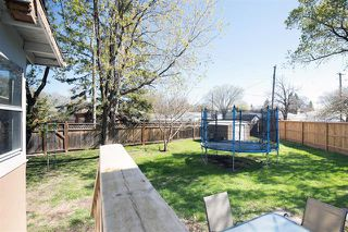 Photo 17: 63 Sage Crescent in Winnipeg: Crestview House for sale (5H)  : MLS®# 1912618