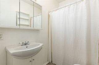 Photo 14: 11504 93 Street in Edmonton: Zone 05 House for sale : MLS®# E4219177