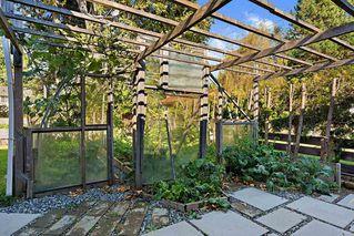 Photo 21: 14419 17A Avenue in Surrey: Sunnyside Park Surrey House for sale (South Surrey White Rock)  : MLS®# R2513084
