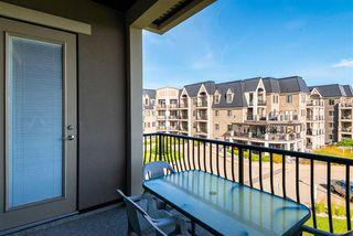 Photo 26: 355 6079 MAYNARD Way in Edmonton: Zone 14 Condo for sale : MLS®# E4210232