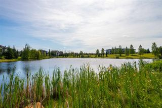 Photo 34: 355 6079 MAYNARD Way in Edmonton: Zone 14 Condo for sale : MLS®# E4210232