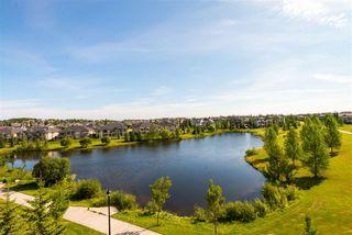 Photo 6: 355 6079 MAYNARD Way in Edmonton: Zone 14 Condo for sale : MLS®# E4210232