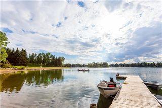 Photo 42: 844 LAKE LUCERNE Drive SE in Calgary: Lake Bonavista Detached for sale : MLS®# A1034964