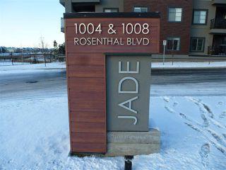 Photo 1: 415 1004 ROSENTHAL Boulevard in Edmonton: Zone 58 Condo for sale : MLS®# E4179216
