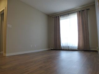 Photo 15: 415 1004 ROSENTHAL Boulevard in Edmonton: Zone 58 Condo for sale : MLS®# E4179216
