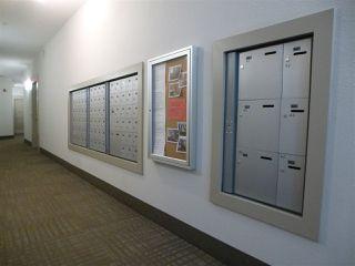 Photo 8: 415 1004 ROSENTHAL Boulevard in Edmonton: Zone 58 Condo for sale : MLS®# E4179216