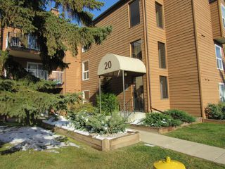 Photo 1: 113, 20 Alpine Place in St. Albert: Condo for rent