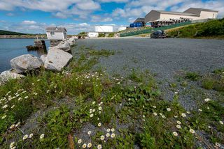 Photo 6: 1333 Main Road in Eastern Passage: 11-Dartmouth Woodside, Eastern Passage, Cow Bay Residential for sale (Halifax-Dartmouth)  : MLS®# 202012674