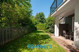 "Photo 35: 38 11461 236 Street in Maple Ridge: Cottonwood MR Townhouse for sale in ""TWO BIRDS"" : MLS®# R2480673"