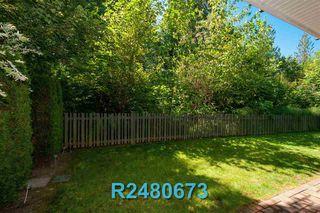 "Photo 37: 38 11461 236 Street in Maple Ridge: Cottonwood MR Townhouse for sale in ""TWO BIRDS"" : MLS®# R2480673"