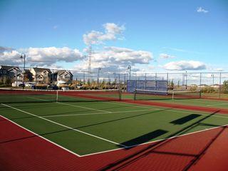 Photo 6: 4409 Suzanna Crescent in Edmonton: Zone 53 House for sale : MLS®# E4221391
