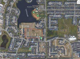 Photo 11: 4409 Suzanna Crescent in Edmonton: Zone 53 House for sale : MLS®# E4221391