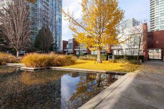 """Photo 19: GR-3J 1077 MARINASIDE Crescent in Vancouver: Yaletown Condo for sale in """"Marinaside Resort"""" (Vancouver West)  : MLS®# R2420245"""