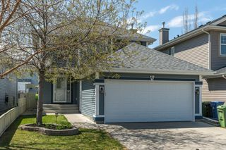 Photo 30: 47 BRIDLEPOST Green SW in Calgary: Bridlewood Detached for sale : MLS®# C4296082