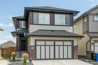 Photo 1: 28 MASTERS Bay SE in Calgary: Mahogany Detached for sale : MLS®# A1016534