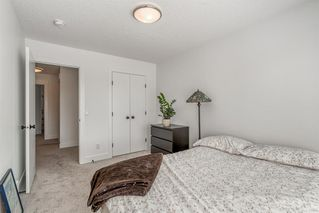 Photo 23: 28 MASTERS Bay SE in Calgary: Mahogany Detached for sale : MLS®# A1016534