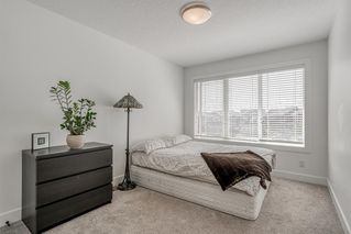Photo 22: 28 MASTERS Bay SE in Calgary: Mahogany Detached for sale : MLS®# A1016534