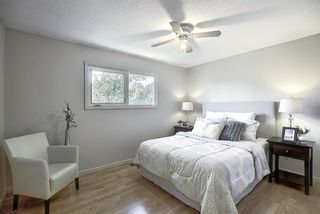 Photo 14: 48 DOVERTHORN Place SE in Calgary: Dover Detached for sale : MLS®# A1023255