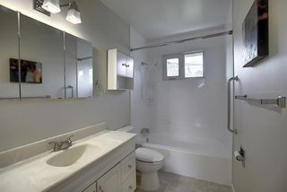 Photo 23: 48 DOVERTHORN Place SE in Calgary: Dover Detached for sale : MLS®# A1023255