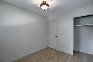 Photo 21: 48 DOVERTHORN Place SE in Calgary: Dover Detached for sale : MLS®# A1023255