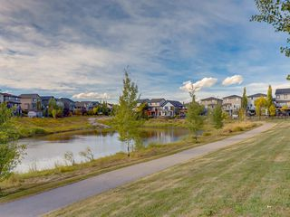 Photo 49: 203 SAGEWOOD Boulevard SW: Airdrie Detached for sale : MLS®# A1037053
