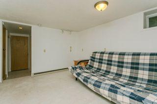 Photo 19: 8616 104 Street in Edmonton: Zone 15 House for sale : MLS®# E4169005