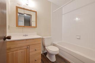 Photo 14: 14518 23 Street in Edmonton: Zone 35 House Half Duplex for sale : MLS®# E4172679