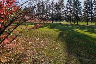 Photo 31: 71 Fairway Drive in Edmonton: Zone 16 House for sale : MLS®# E4173248