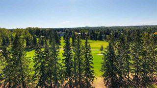 Photo 36: 71 Fairway Drive in Edmonton: Zone 16 House for sale : MLS®# E4173248