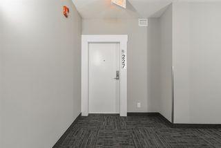 Photo 2: 227 11074 ELLERSLIE Road in Edmonton: Zone 55 Condo for sale : MLS®# E4179479