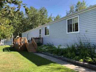Photo 5: 621 254054 TWP RD 460: Rural Wetaskiwin County House for sale : MLS®# E4193688