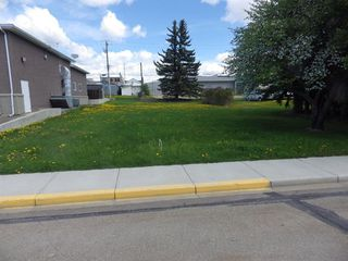 Photo 3: 5010 49th Avenue in Rimbey: NONE Land for sale : MLS®# A1003223