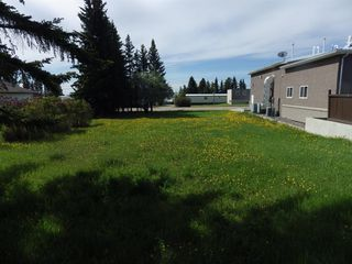 Photo 4: 5010 49th Avenue in Rimbey: NONE Land for sale : MLS®# A1003223