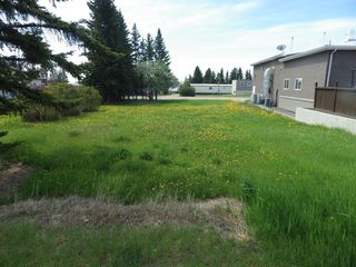 Photo 2: 5010 49th Avenue in Rimbey: NONE Land for sale : MLS®# A1003223