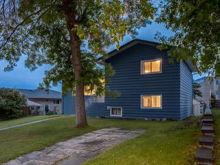 Photo 37: 71 FAY Road SE in Calgary: Fairview Detached for sale : MLS®# C4305316