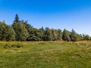 Photo 5: 9880 276 Street in Maple Ridge: Whonnock Land for sale : MLS®# R2483293