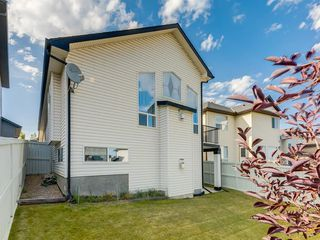 Photo 42: 51 KINCORA Park NW in Calgary: Kincora Detached for sale : MLS®# A1027071