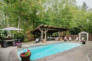 "Photo 33: 24625 MCCLURE Drive in Maple Ridge: Albion House for sale in ""THE UPLANDS"" : MLS®# R2498339"