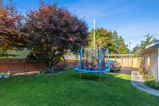 Photo 20: 3729 DUBOIS Street in Burnaby: Suncrest House for sale (Burnaby South)  : MLS®# R2513446