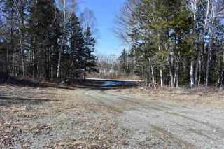 Photo 1: 110 Beaver Lane in Marshalltown: 401-Digby County Vacant Land for sale (Annapolis Valley)  : MLS®# 201925142