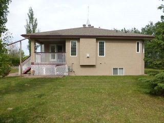 Photo 40: 25278 Twp 490: Rural Leduc County House for sale : MLS®# E4186616