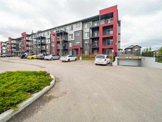 Photo 33: 302 5521 7 Avenue in Edmonton: Zone 53 Condo for sale : MLS®# E4196954