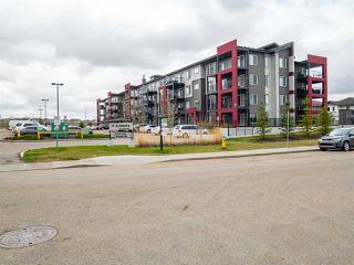 Photo 13: 302 5521 7 Avenue in Edmonton: Zone 53 Condo for sale : MLS®# E4196954