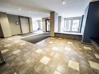 Photo 12: 302 5521 7 Avenue in Edmonton: Zone 53 Condo for sale : MLS®# E4196954