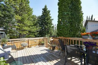 Photo 41: 6 HAYDEN Place: St. Albert House for sale : MLS®# E4207389