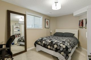 Photo 33: 6 HAYDEN Place: St. Albert House for sale : MLS®# E4207389
